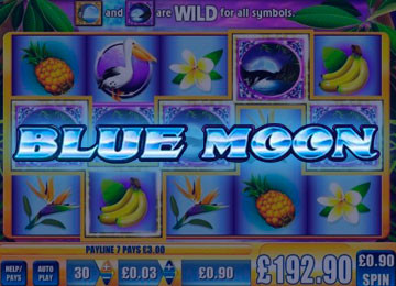 Blue Moon Pokie Machine