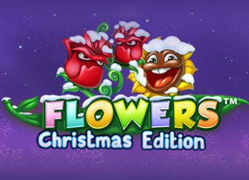 Flowers Christmas Edition Online Pokie Review